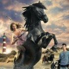 Penny's Shadow – leuke weetjes over de paardenfilm
