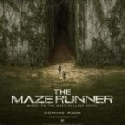Film: The Maze Runner