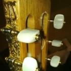 De Spaanse gitaar
