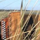 Trekharmonica - diatonische en wisseltonige trekzak