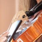 Hoe hou ik mijn viool in topconditie? Tips voor onderhoud