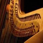 Harp, geschiedenis en verschillende soorten
