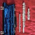 "Dwarsfluitmethode ""Learn as You Play: Fluit"""