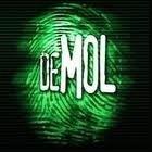 Wie is de mol? 2013 - Seizoen 13