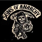 Sons of Anarchy, de Amerikaanse misdaadserie