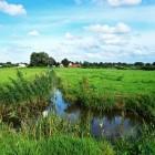 Terug naar Oosterdonk: de bekroonde Vlaamse tv-serie