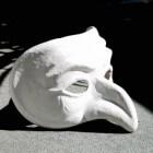 Theaterkanjer: La Cage aux folles